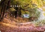 Engel des Herbstes